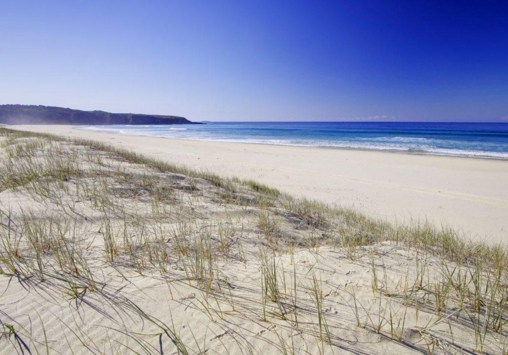 Treachery Beach at Seal Rocks