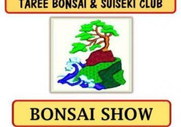 Taree Bonsai Show