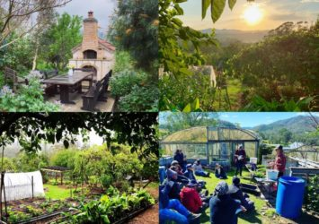 Limestone Permaculture, Stroud