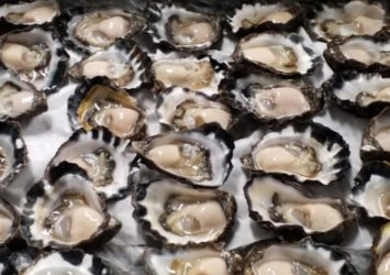 Baines Oysters