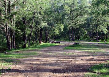 Gloryvale Reserve