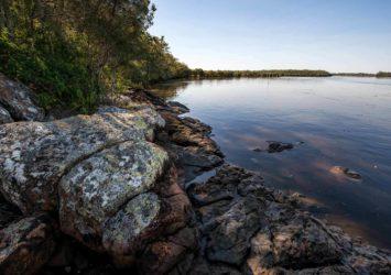 Karuah National Park
