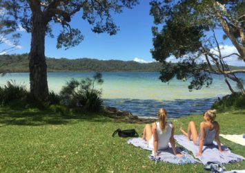 Neranie camping and picnic area in Myall Lakes National Park