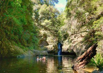 Potaroo Falls, Tapin Tops National Park