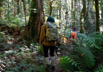 Wombat Creek campground
