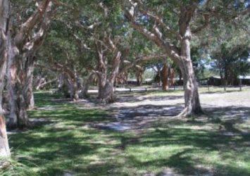 Sandbar & Bushland Holiday Parks