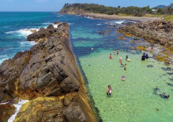 Swimming at The Tanks, Forster