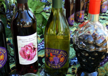 Gloucester River Winery