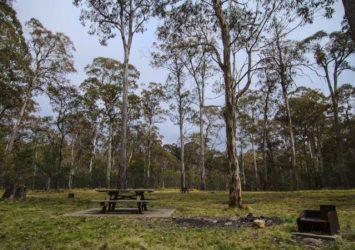 Horse Swamp Campground