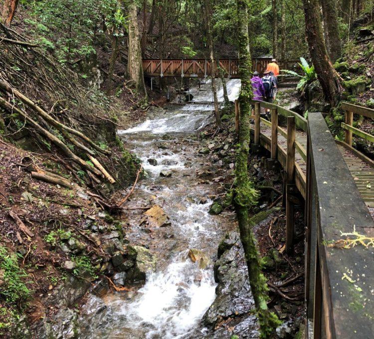 Copeland Creek, Copeland State Conservation Area