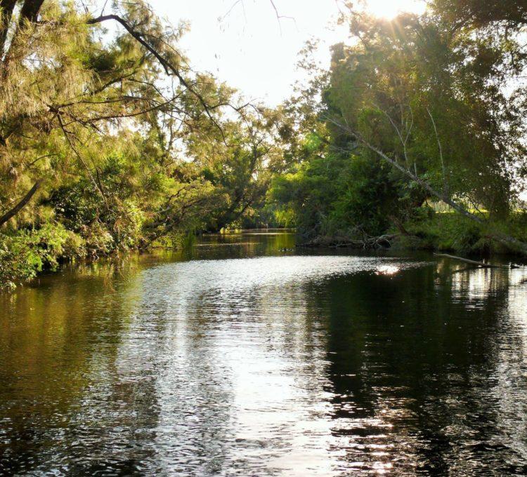 Gloucester River at Stantons Lane upstream