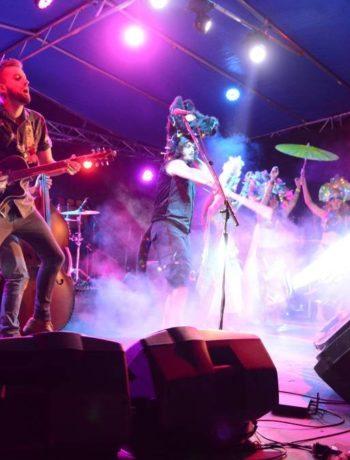 Donna Ballard explains the inspiration behind Wingham Akoostik Music Festival