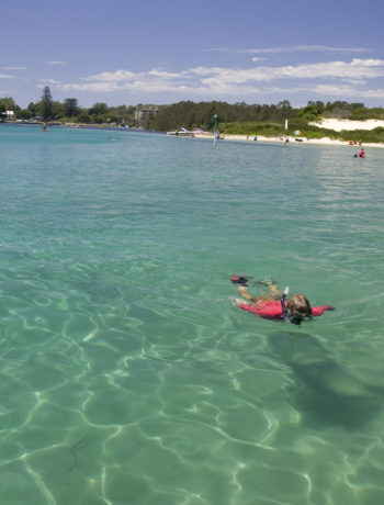 Tips before you enjoy world class snorkelling in the Barrington Coast