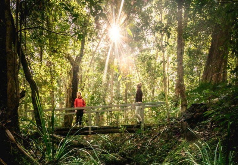 Wallingat National Park trail