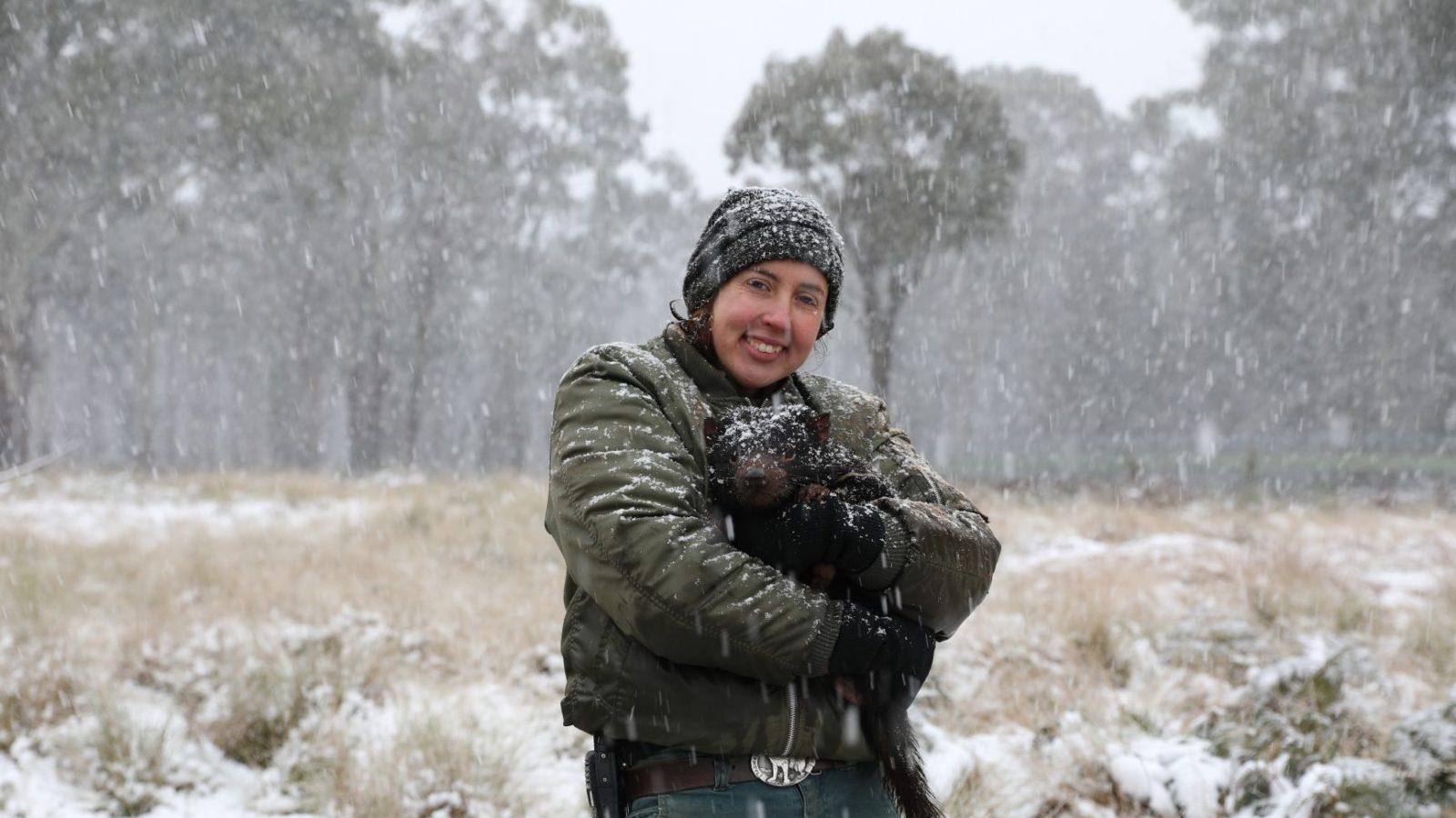 Tasmanian devil and Aussie Ark keeper in snow June 2019