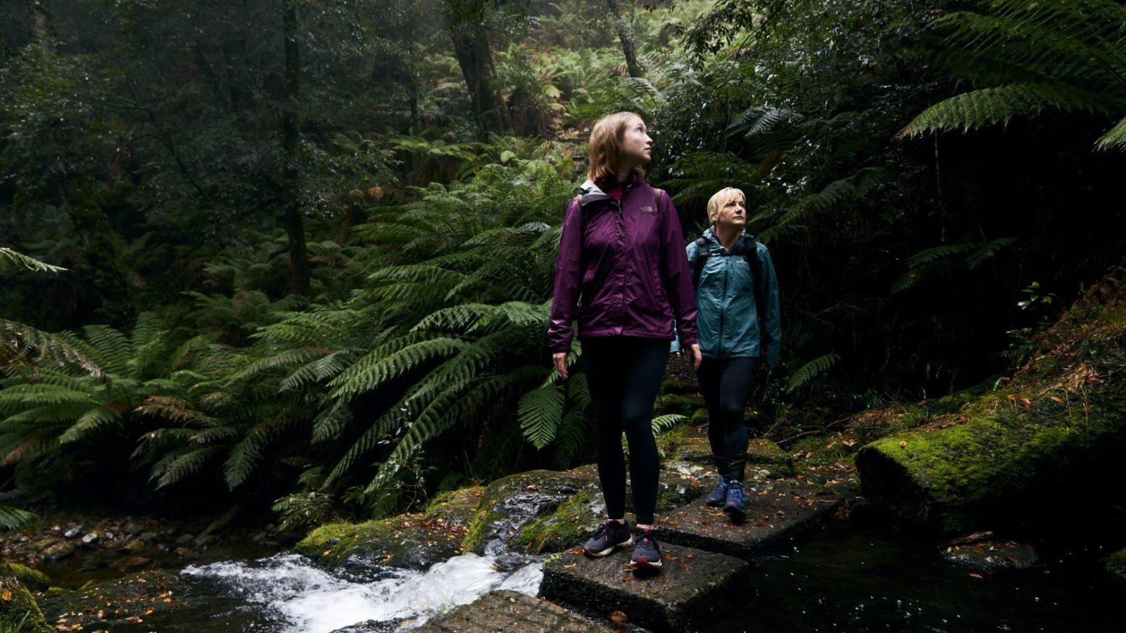 Exploring the Barrington Tops