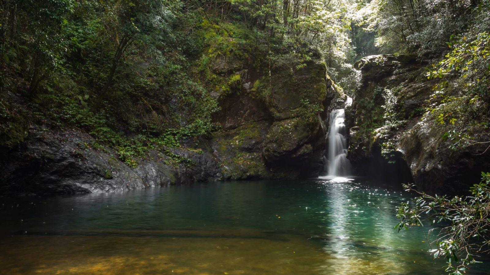 Potaroo Falls, Tapin Tops National Park, clear fresh water falls