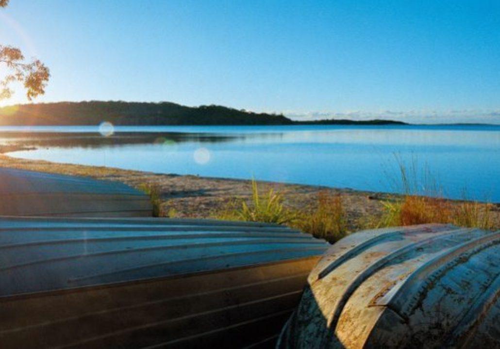 Sandpiper on Smiths Lake