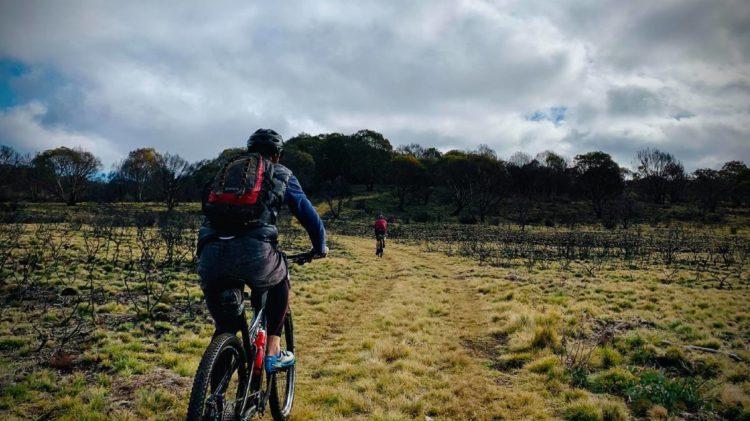 Barrington Tops trail in the Barrington Coast 500 cycling event.