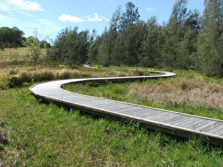 New boardwalk through the wetlands following the devastating 2019/2020 bushfires.