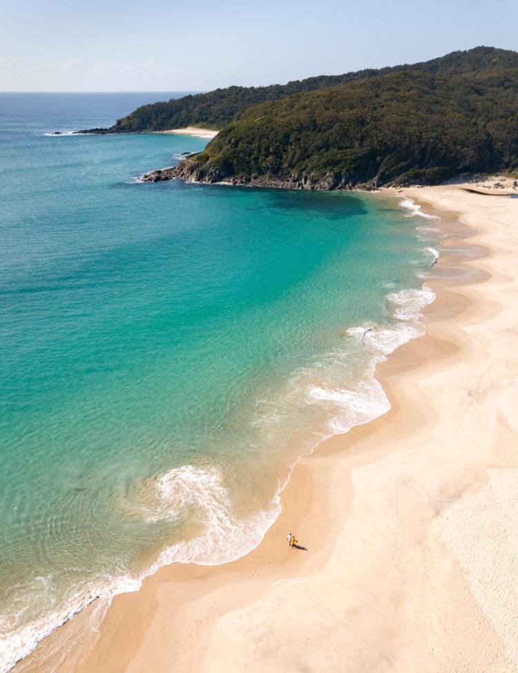 Elizabeth Beach, Pacific Palms. Image: Catherine Boyd IG/@treesandsea