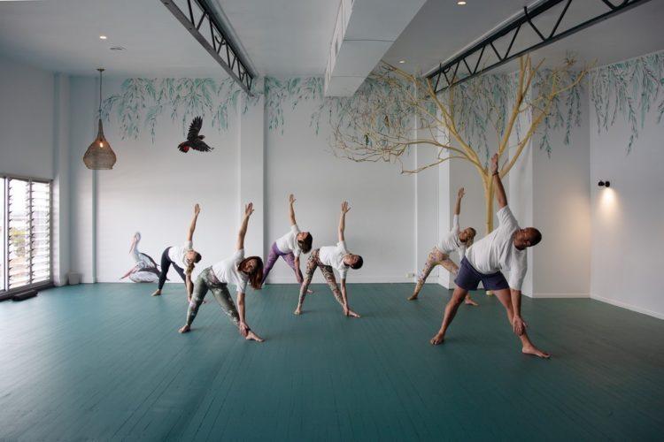 Forster Yoga Studio stretching yogis