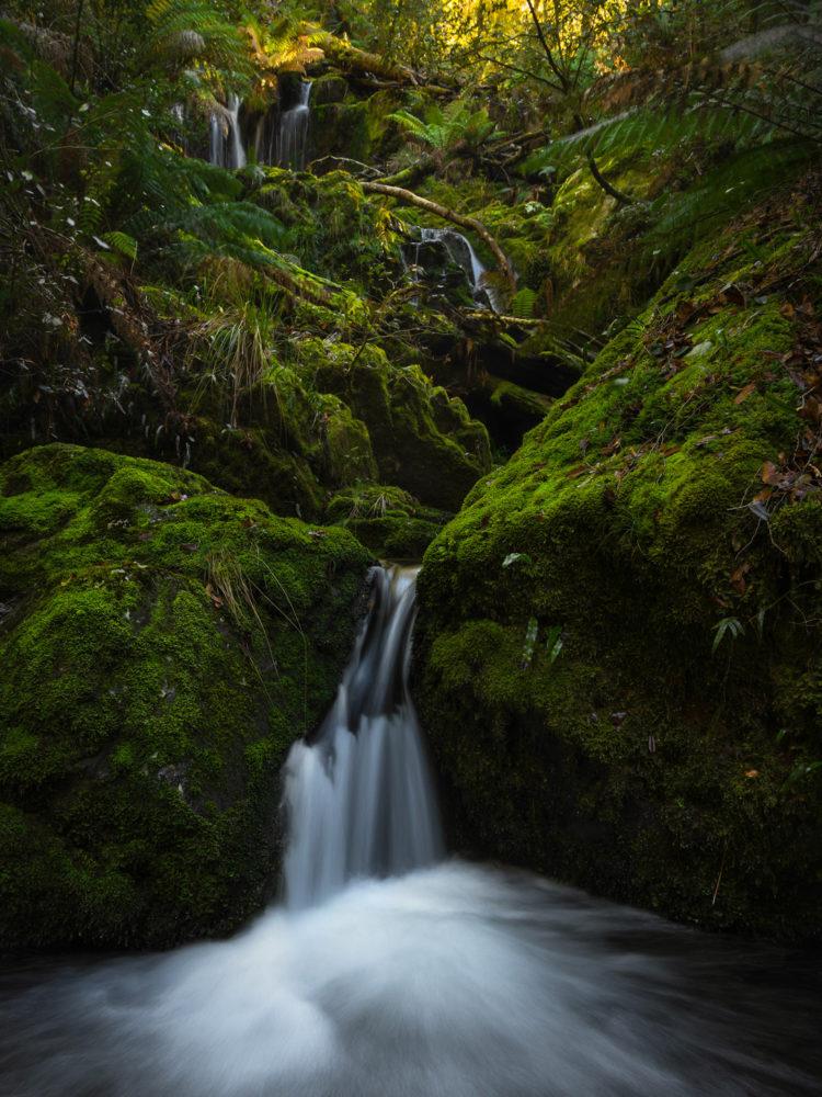 Gloucester Tops cascade (photo: Catherine Boyd)