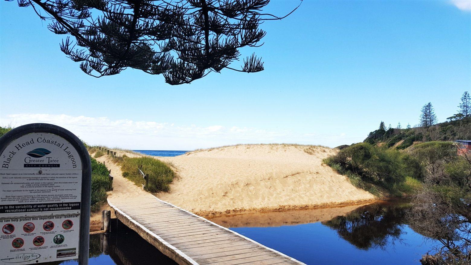 Cross the footbridge onto the dunes of Black Head beach.
