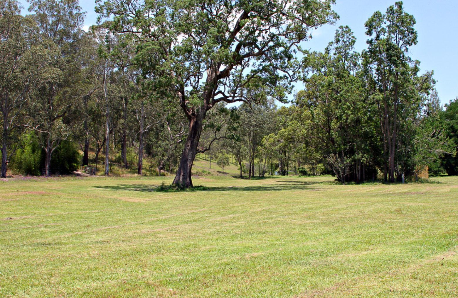 Copeland Reserve at Copeland