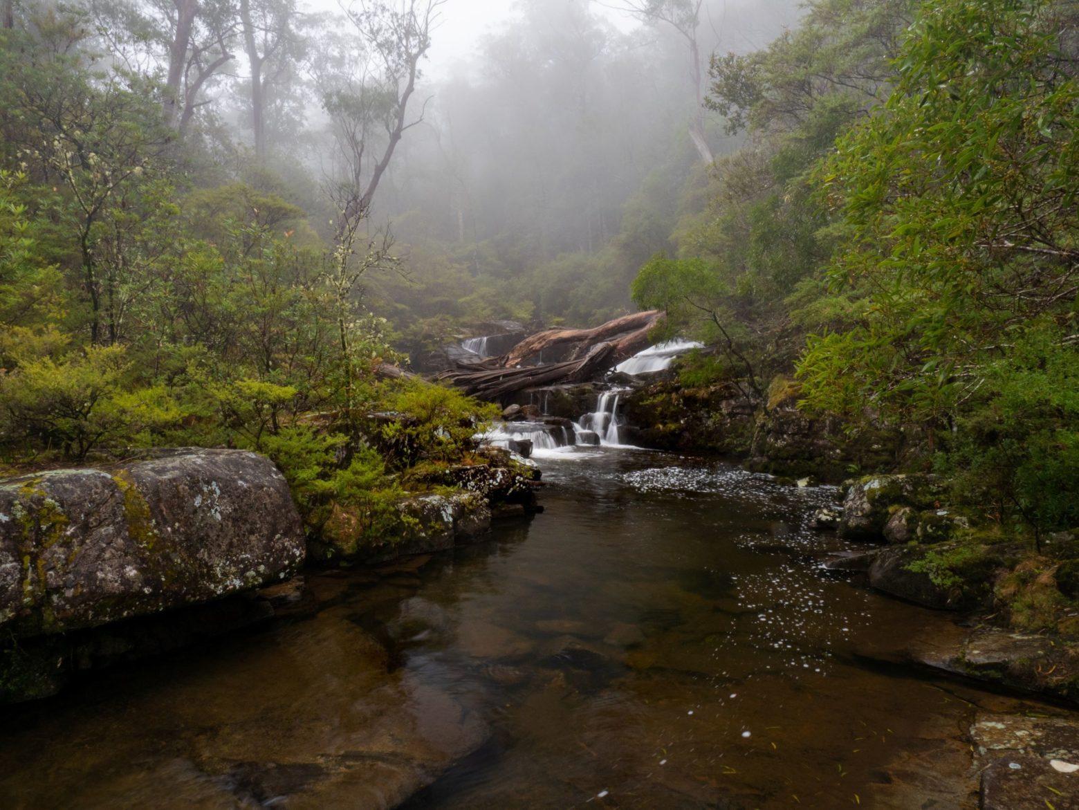 Gloucester Tops Falls, Barrington Tops National Park | Mark Fitz Photography